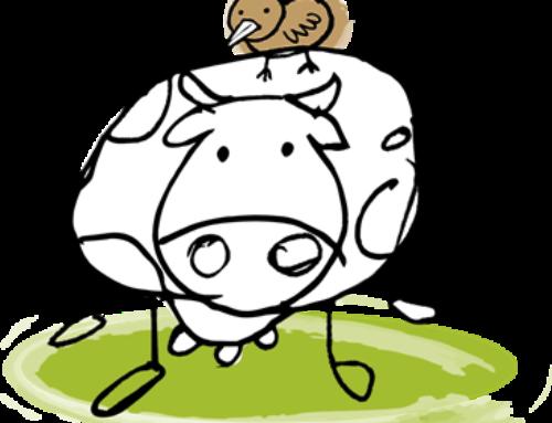 As accións formativas da cooperativa Simbiosis con descontos para cooperativas